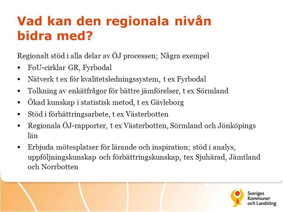 Vad kan den regionala nivån bidra med