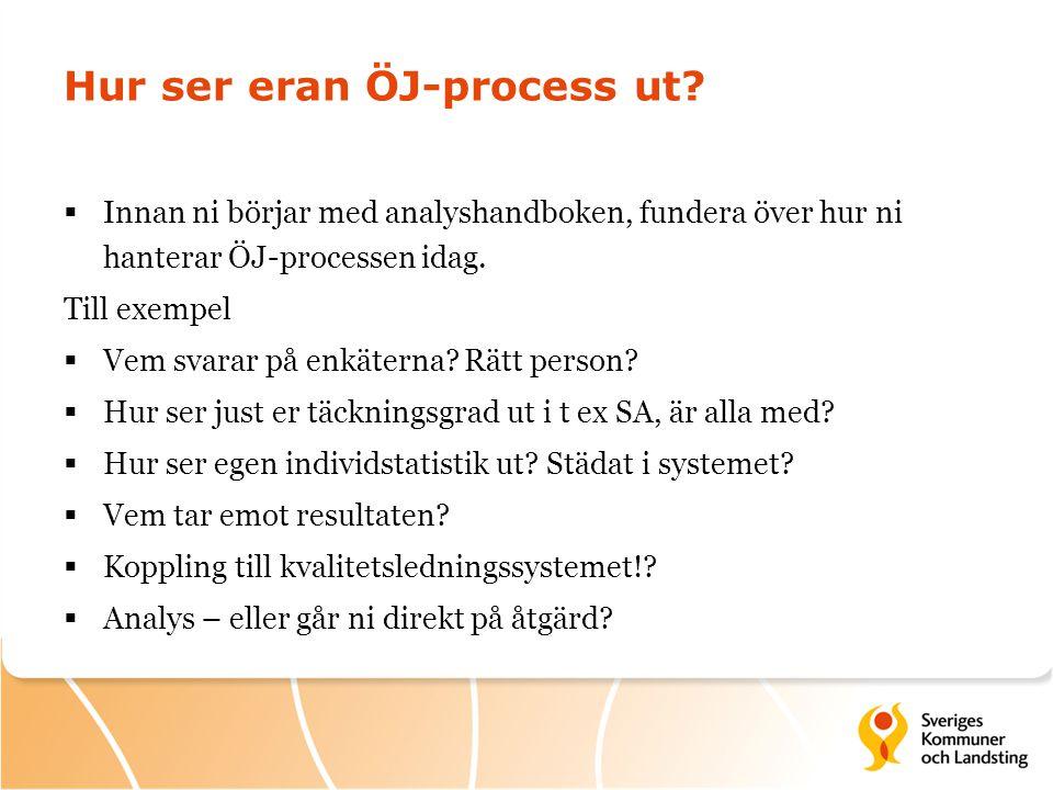 Hur ser eran ÖJ-process ut
