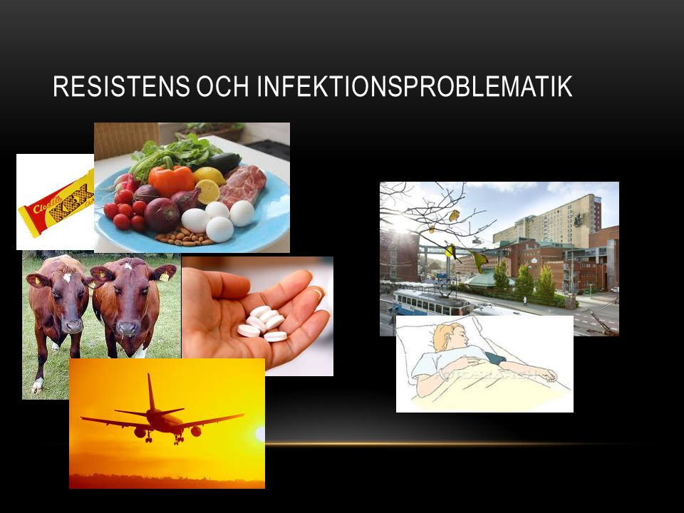 Resistens och infektionsproblematik
