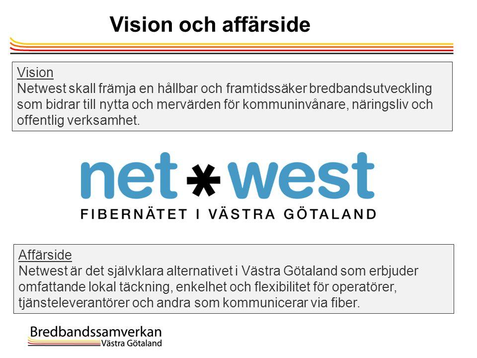 Vision och affärside Vision