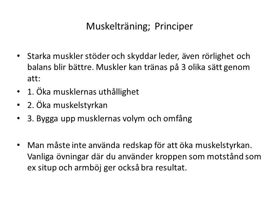 Muskelträning; Principer