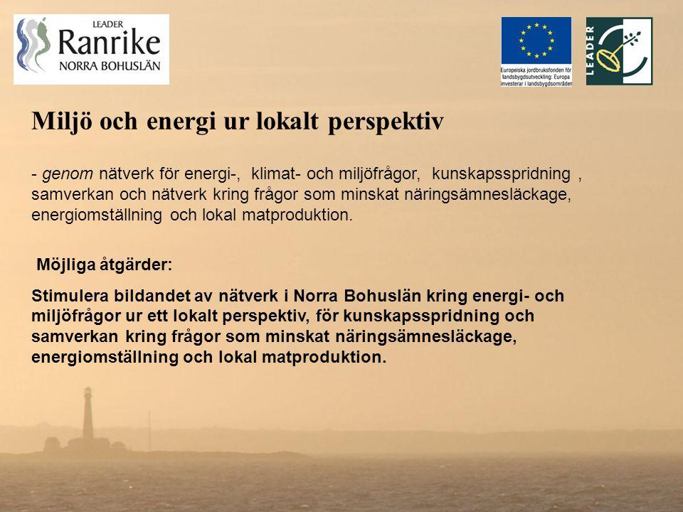 Miljö och energi ur lokalt perspektiv