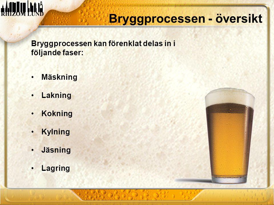 Bryggprocessen - översikt