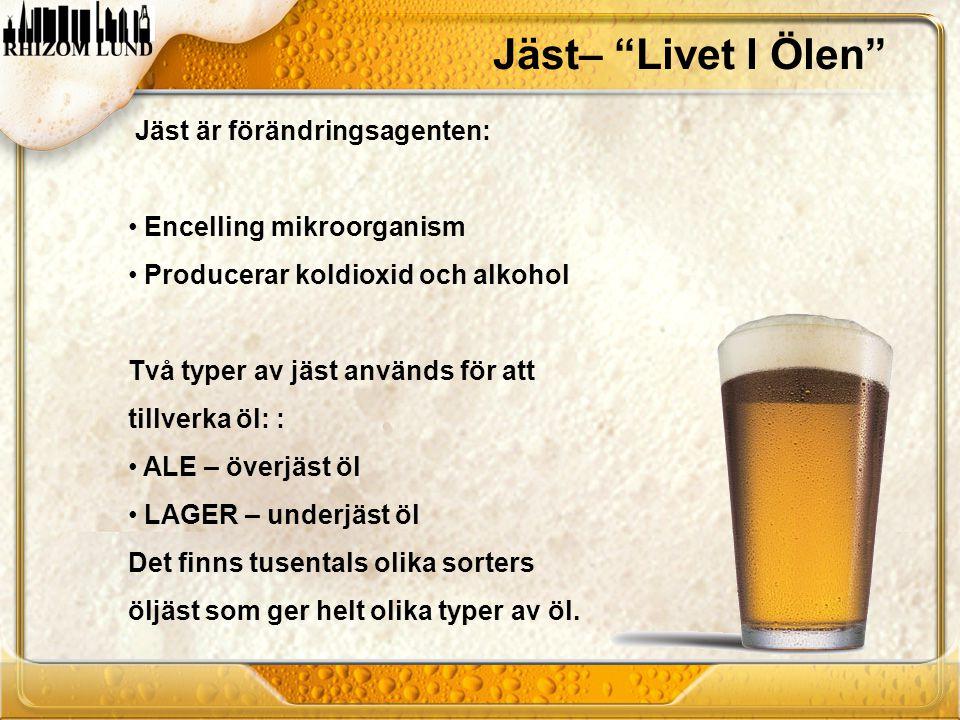 Jäst– Livet I Ölen Jäst är förändringsagenten: