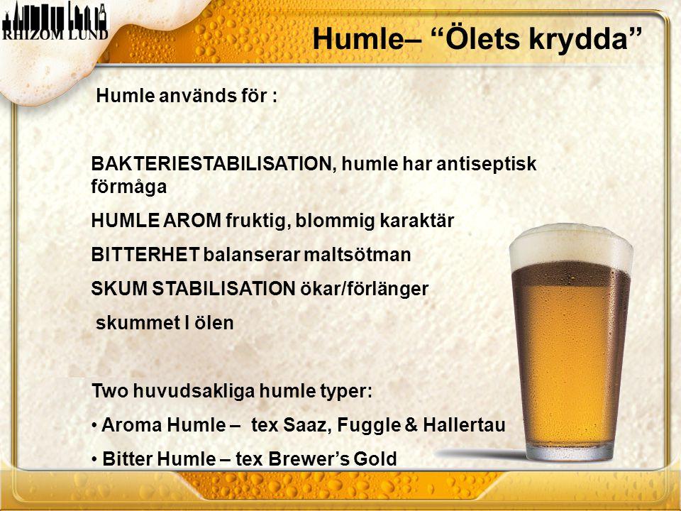 Humle– Ölets krydda Humle används för :