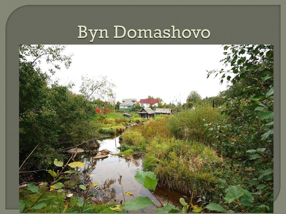 Byn Domashovo