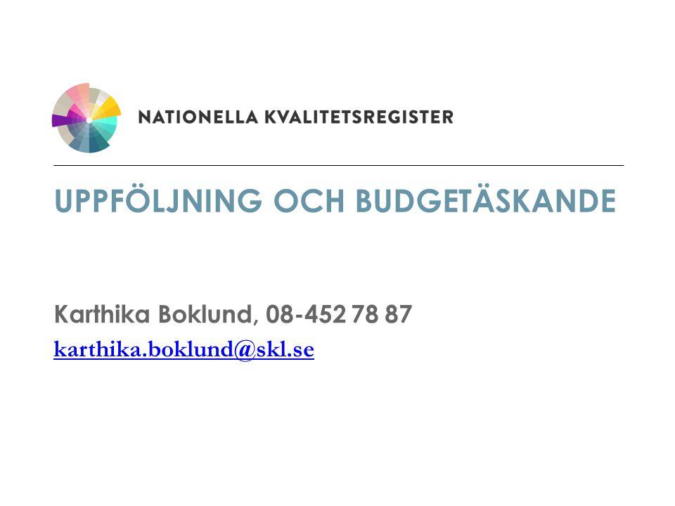 Uppföljning och budgetäskande