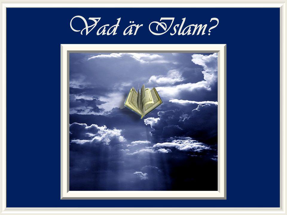 Vad är Islam
