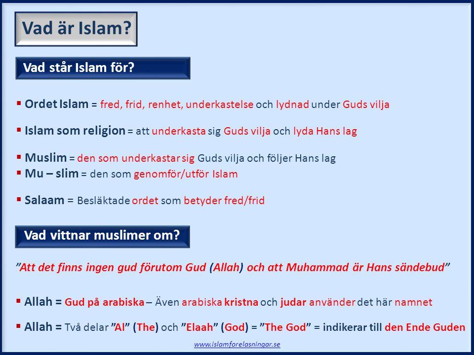 Vad är Islam Vad står Islam för Vad vittnar muslimer om