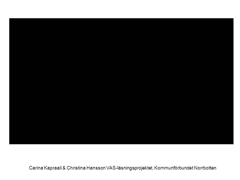 Carina Kapraali & Christina Hansson VAS-läsningsprojektet, Kommunförbundet Norrbotten