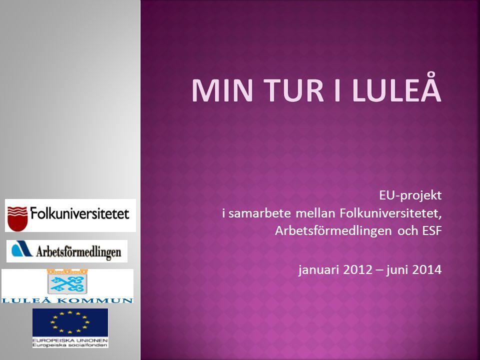 Min tur I LULEÅ EU-projekt i samarbete mellan Folkuniversitetet, Arbetsförmedlingen och ESF.