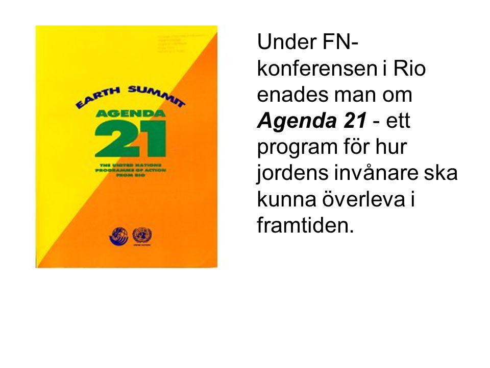 Under FN-konferensen i Rio enades man om Agenda 21 - ett program för hur jordens invånare ska kunna överleva i framtiden.