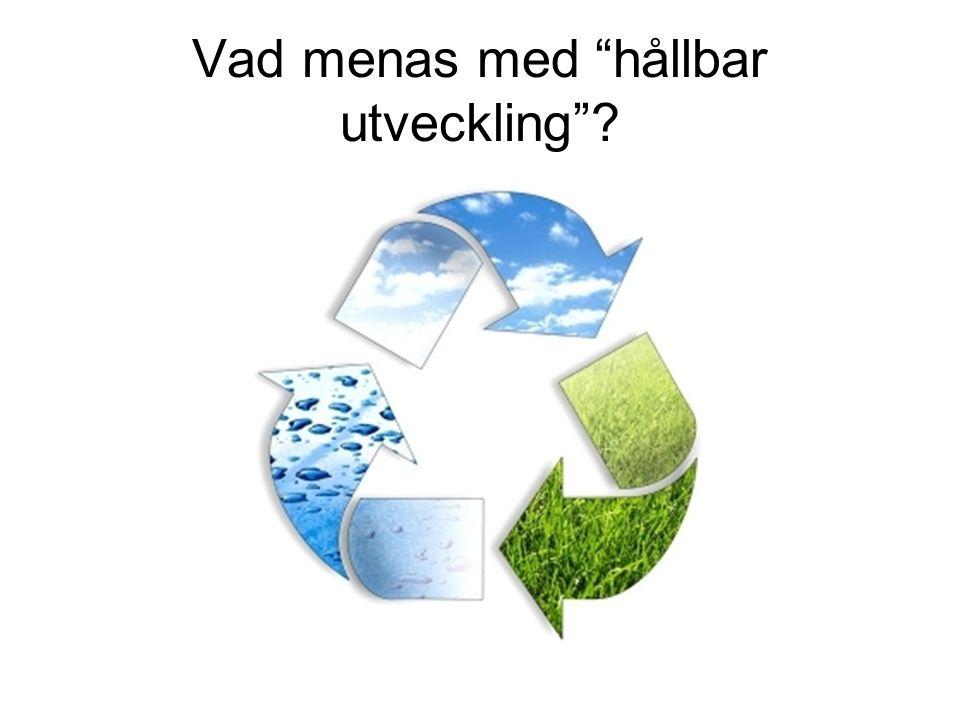 Vad menas med hållbar utveckling