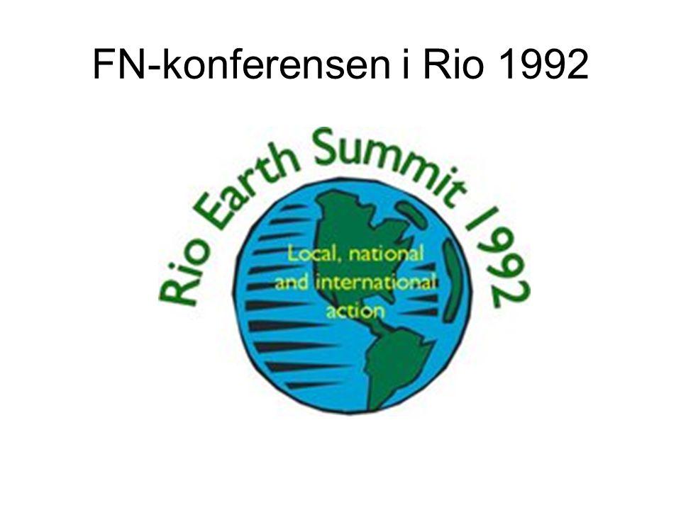 FN-konferensen i Rio 1992