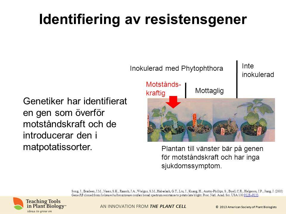 Identifiering av resistensgener