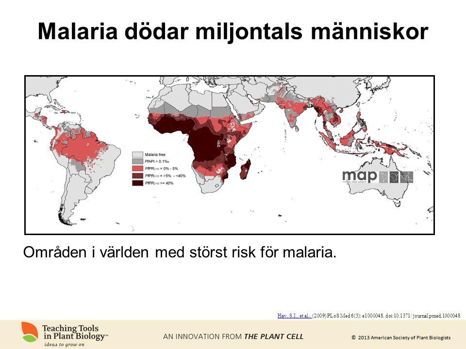 Malaria dödar miljontals människor