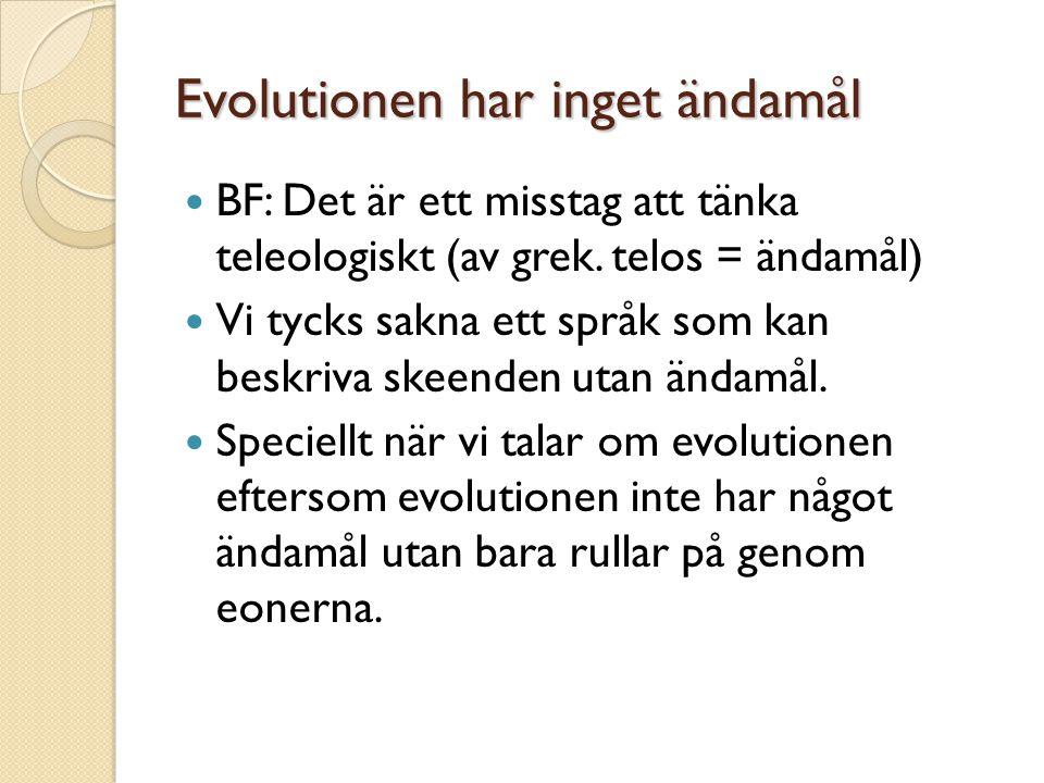 Evolutionen har inget ändamål
