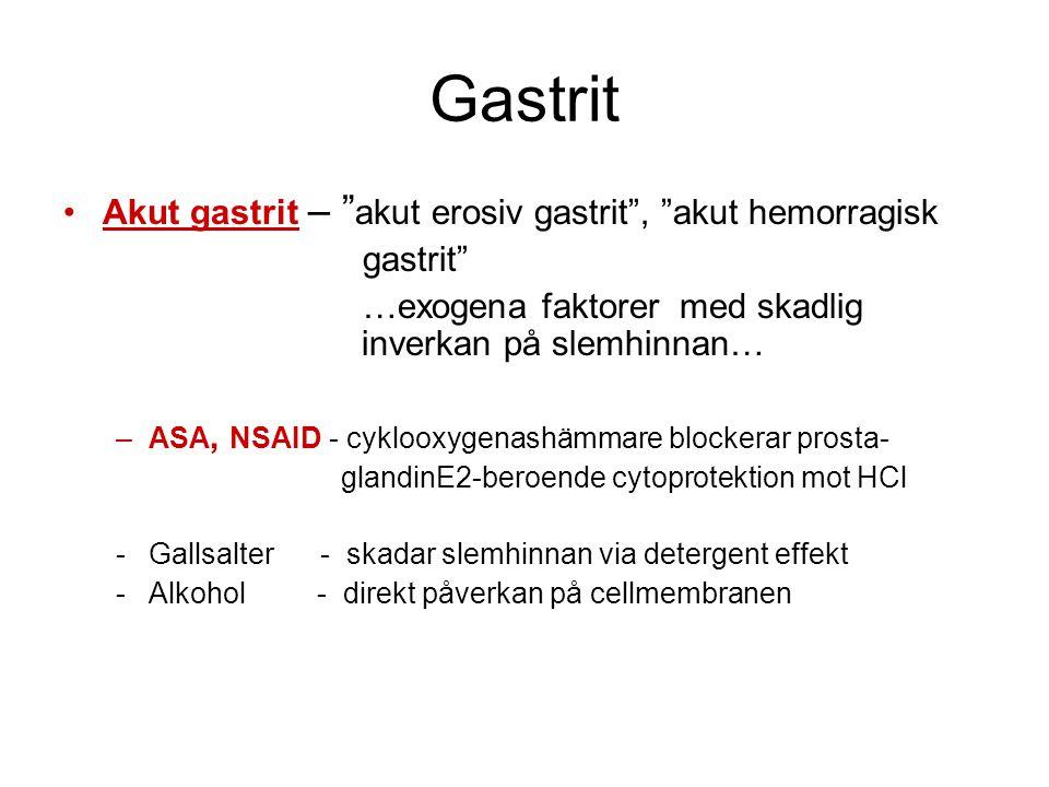 Gastrit Akut gastrit – akut erosiv gastrit , akut hemorragisk