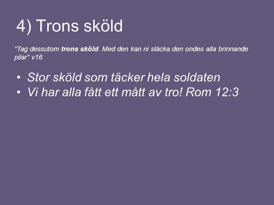 4) Trons sköld Stor sköld som täcker hela soldaten