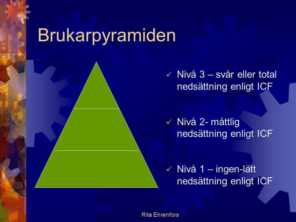 Brukarpyramiden Nivå 3 – svår eller total nedsättning enligt ICF