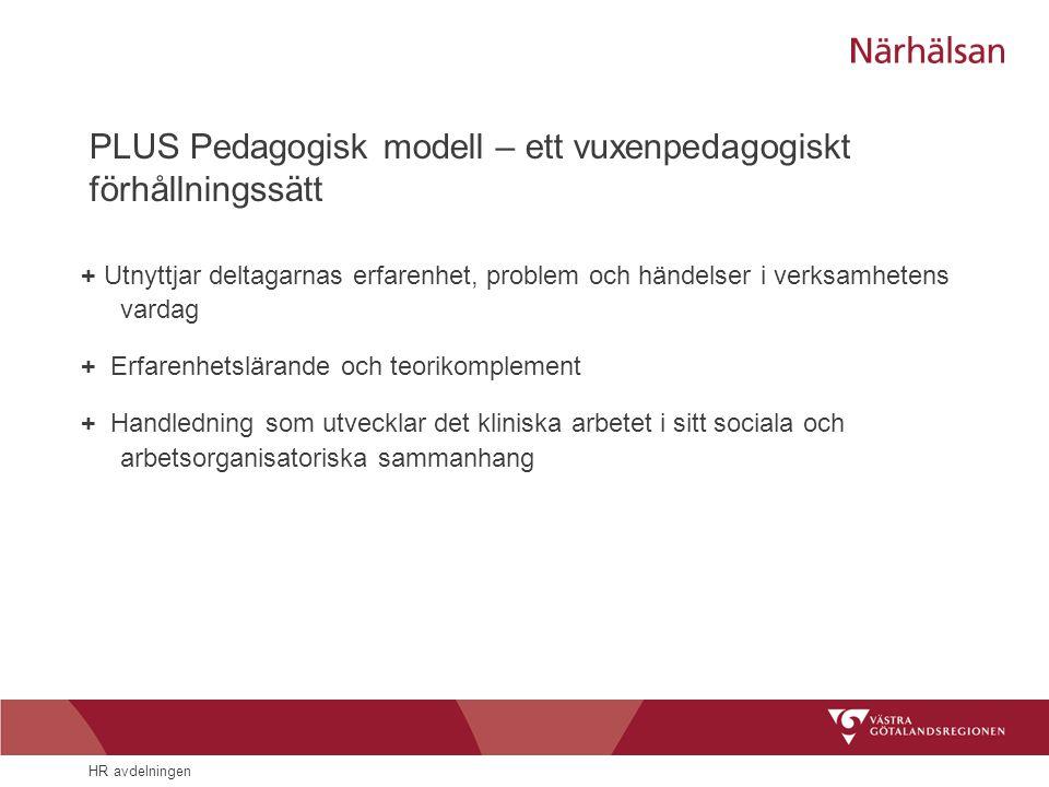 PLUS Pedagogisk modell – ett vuxenpedagogiskt förhållningssätt
