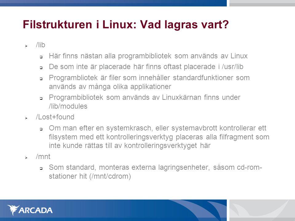 Filstrukturen i Linux: Vad lagras vart