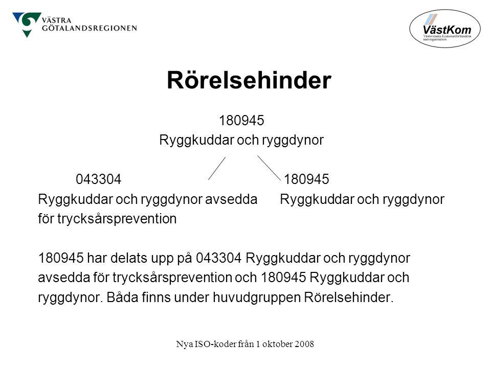 Rörelsehinder 180945 Ryggkuddar och ryggdynor 043304 180945