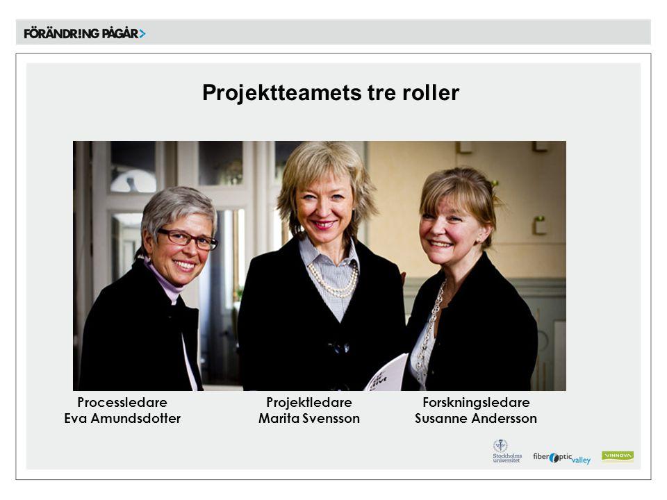 Projektteamets tre roller