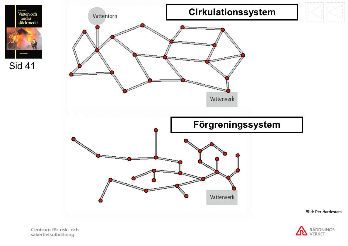 Cirkulations- och förgreningssystem