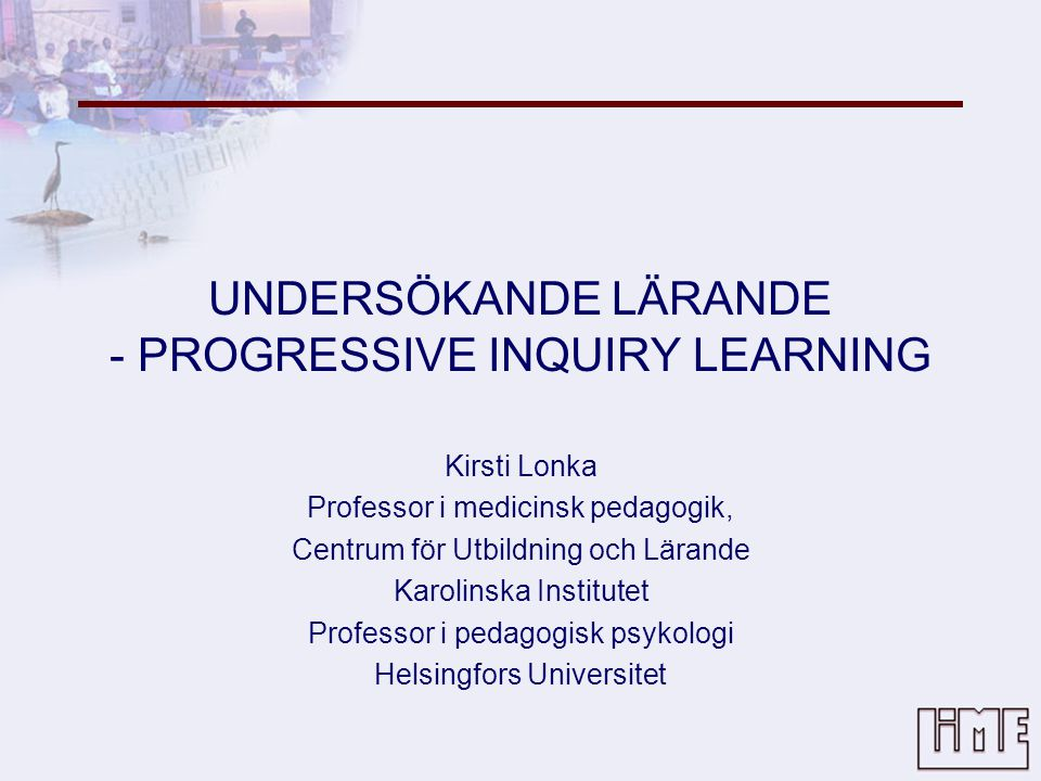 UNDERSÖKANDE LÄRANDE - PROGRESSIVE INQUIRY LEARNING