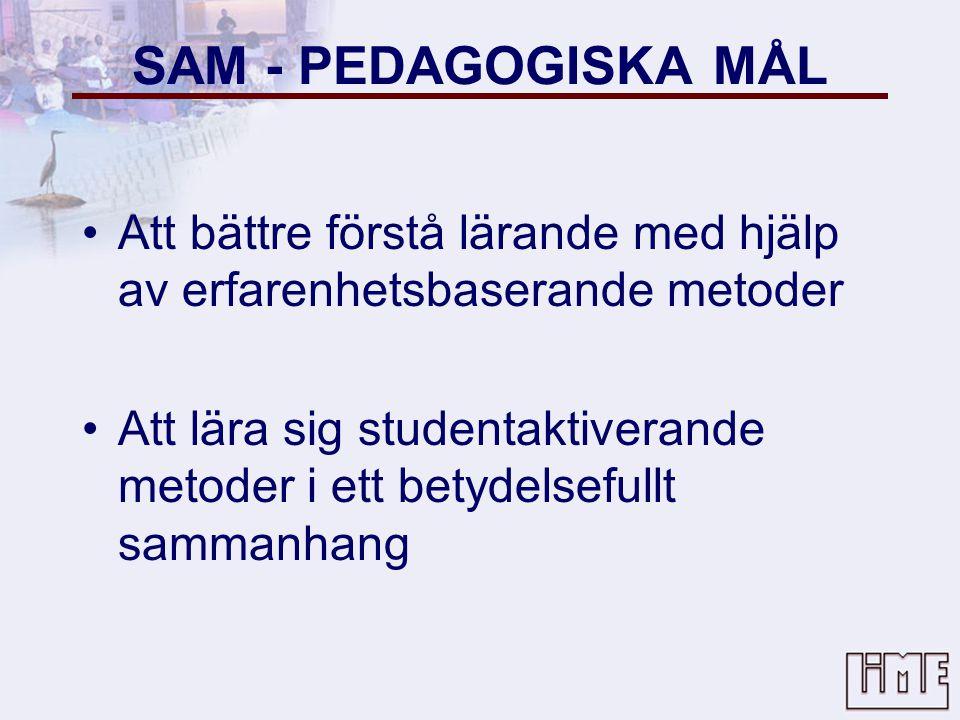 SAM - PEDAGOGISKA MÅL Att bättre förstå lärande med hjälp av erfarenhetsbaserande metoder.