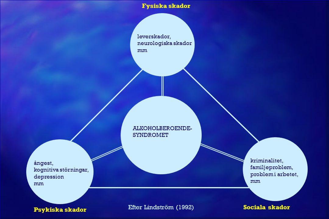 Fysiska skador Efter Lindström (1992) Sociala skador Psykiska skador