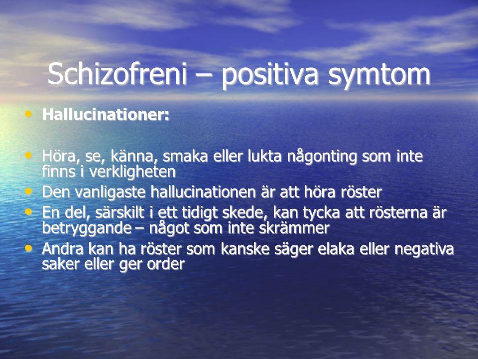 Schizofreni – positiva symtom