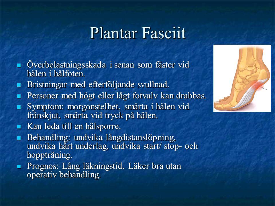 Plantar Fasciit Överbelastningsskada i senan som fäster vid hälen i hålfoten. Bristningar med efterföljande svullnad.