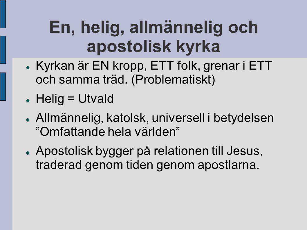 En, helig, allmännelig och apostolisk kyrka