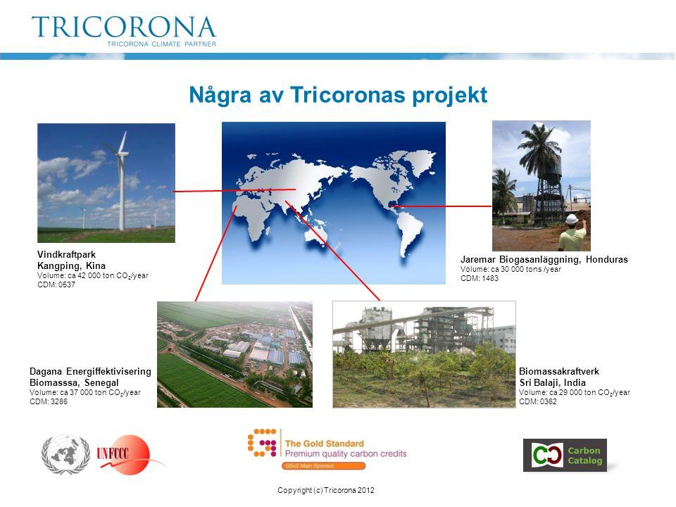 Några av Tricoronas projekt