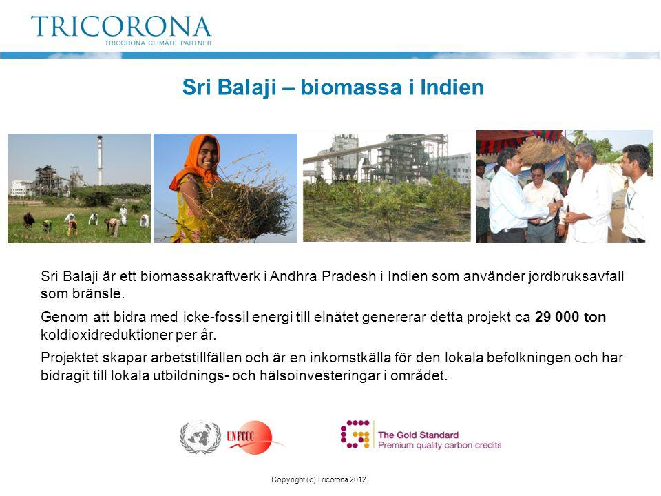 Sri Balaji – biomassa i Indien