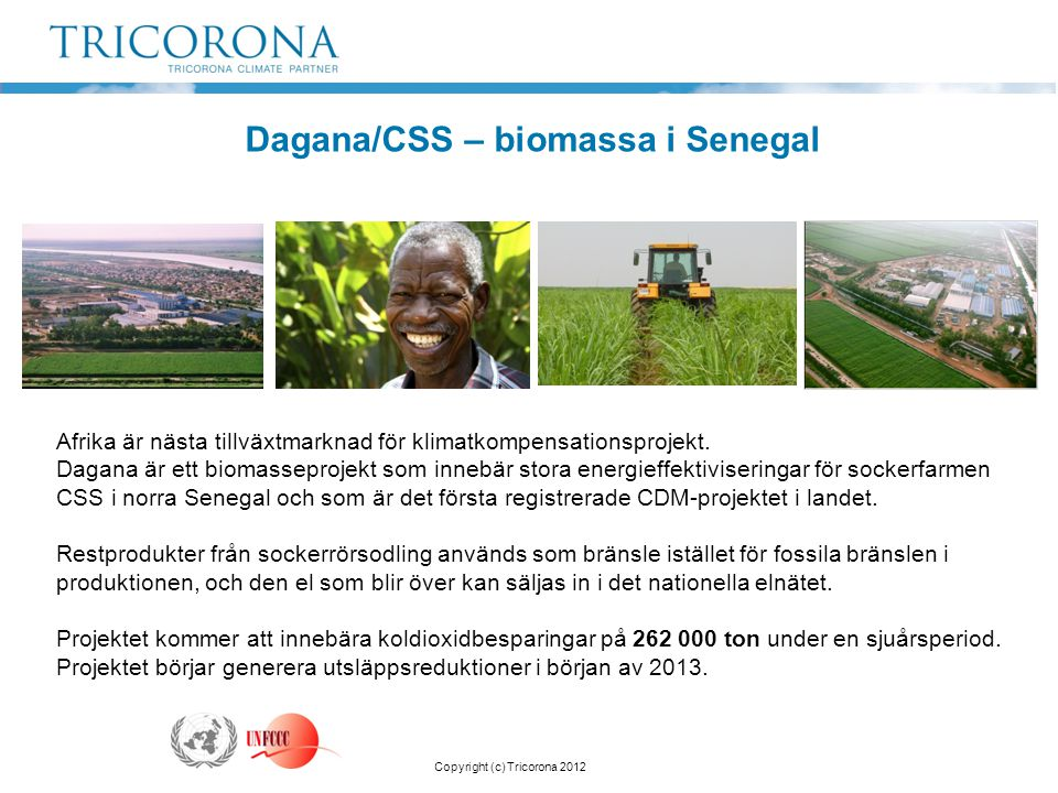 Dagana/CSS – biomassa i Senegal