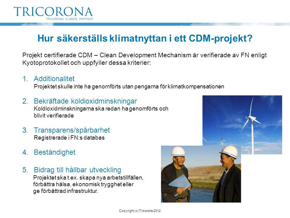 Hur säkerställs klimatnyttan i ett CDM-projekt