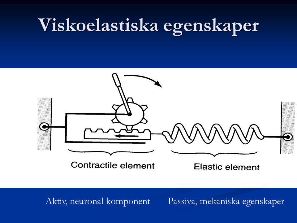 Viskoelastiska egenskaper