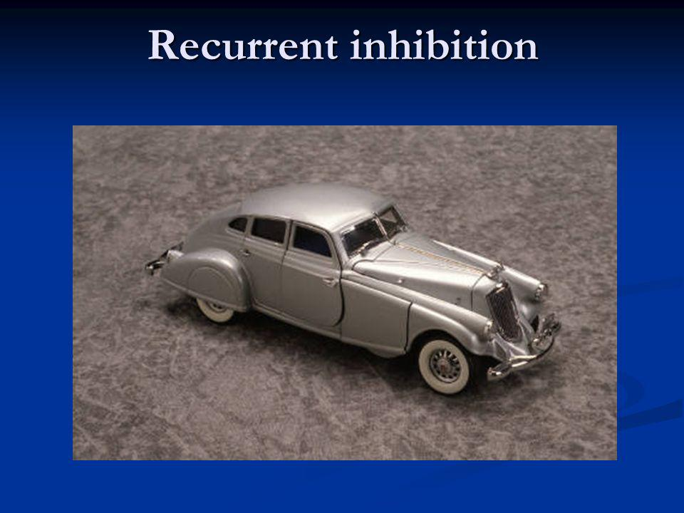 Recurrent inhibition