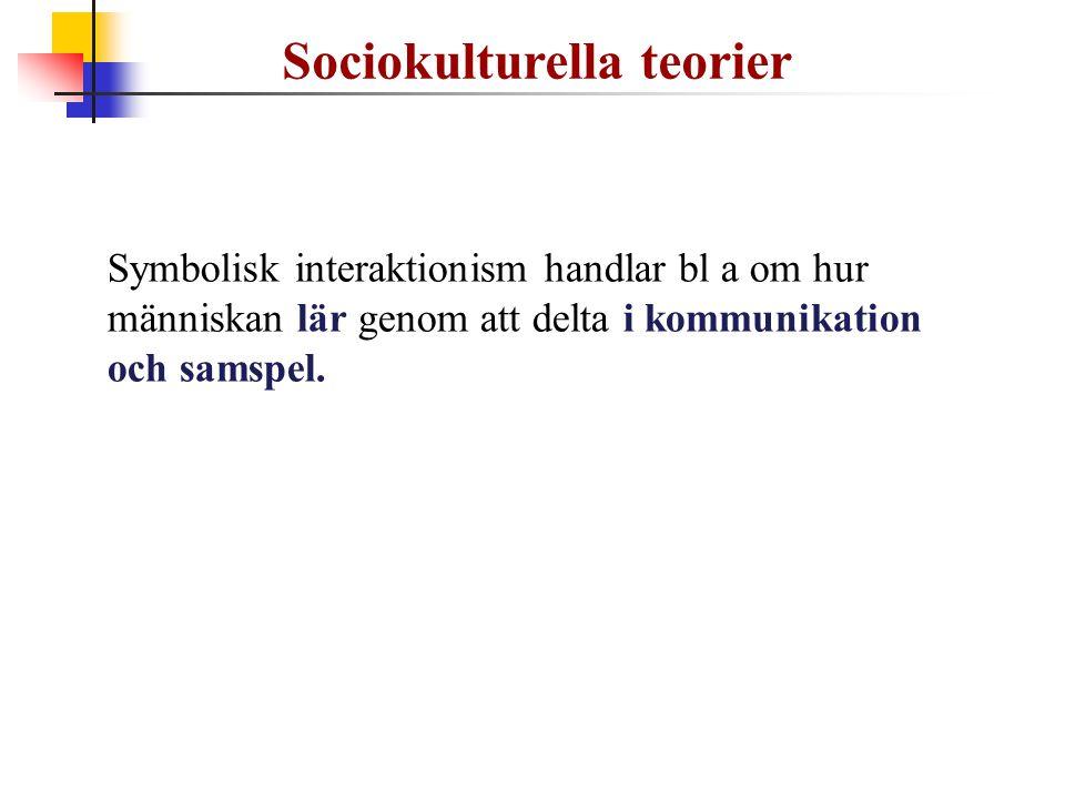 Sociokulturella teorier