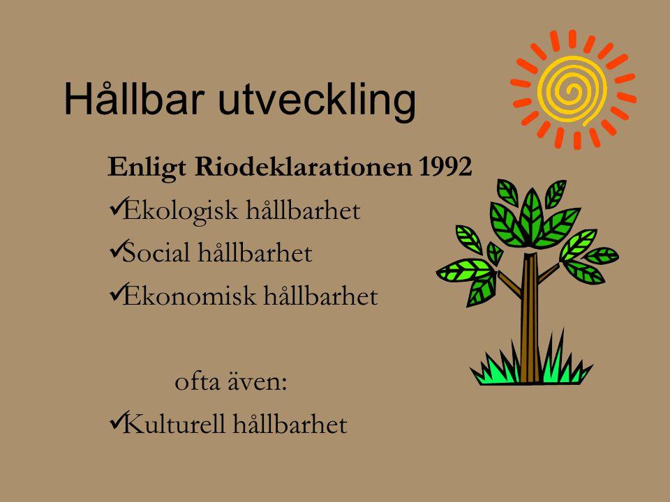 Hållbar utveckling Enligt Riodeklarationen 1992 Ekologisk hållbarhet