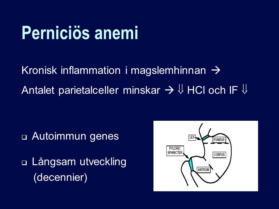 Perniciös anemi Kronisk inflammation i magslemhinnan 