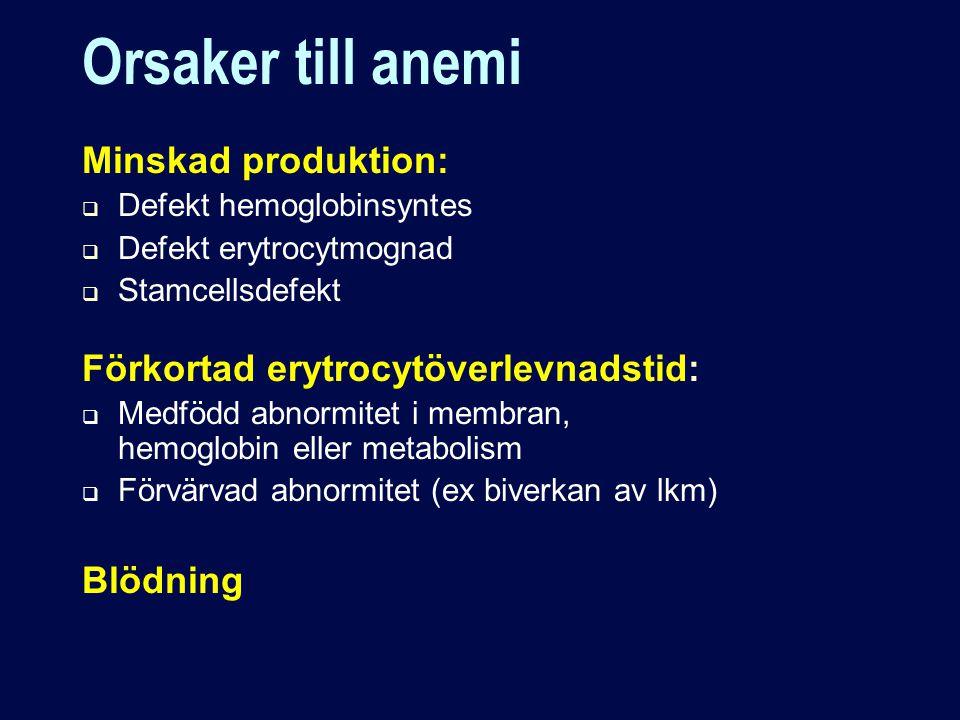 Orsaker till anemi Minskad produktion: