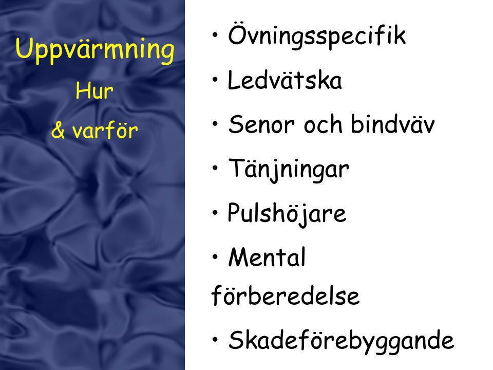 Uppvärmning Övningsspecifik Ledvätska Senor och bindväv Tänjningar