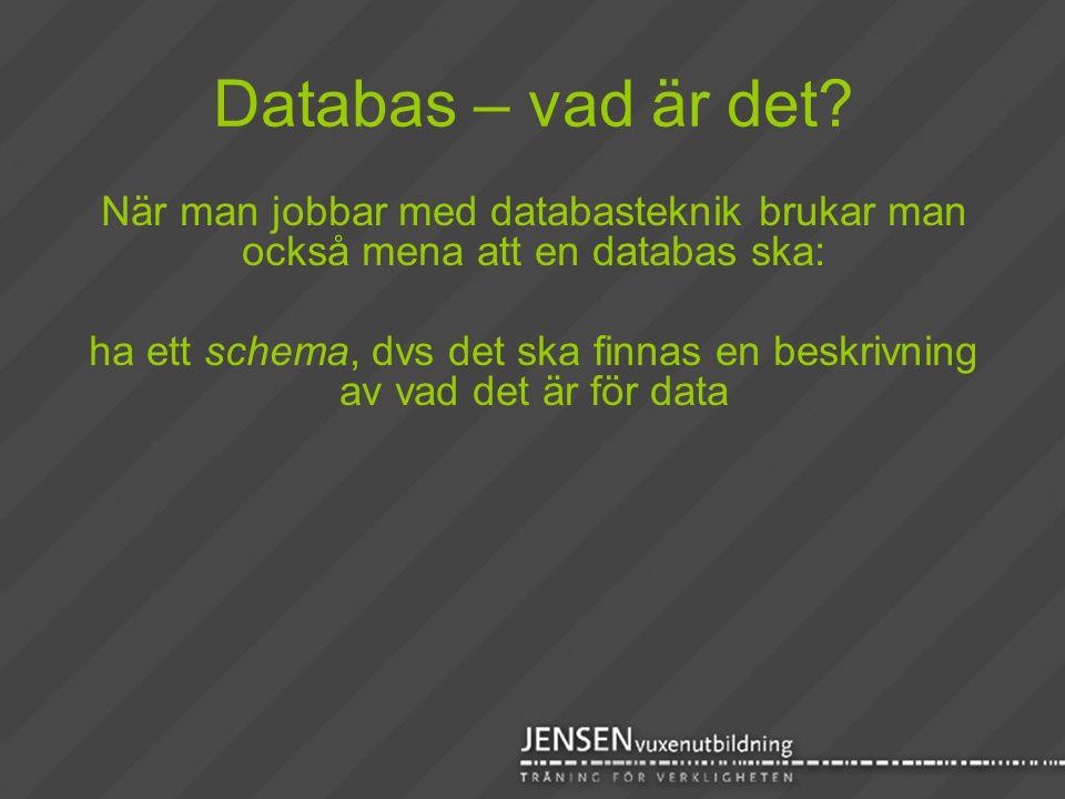 Databas – vad är det När man jobbar med databasteknik brukar man också mena att en databas ska: