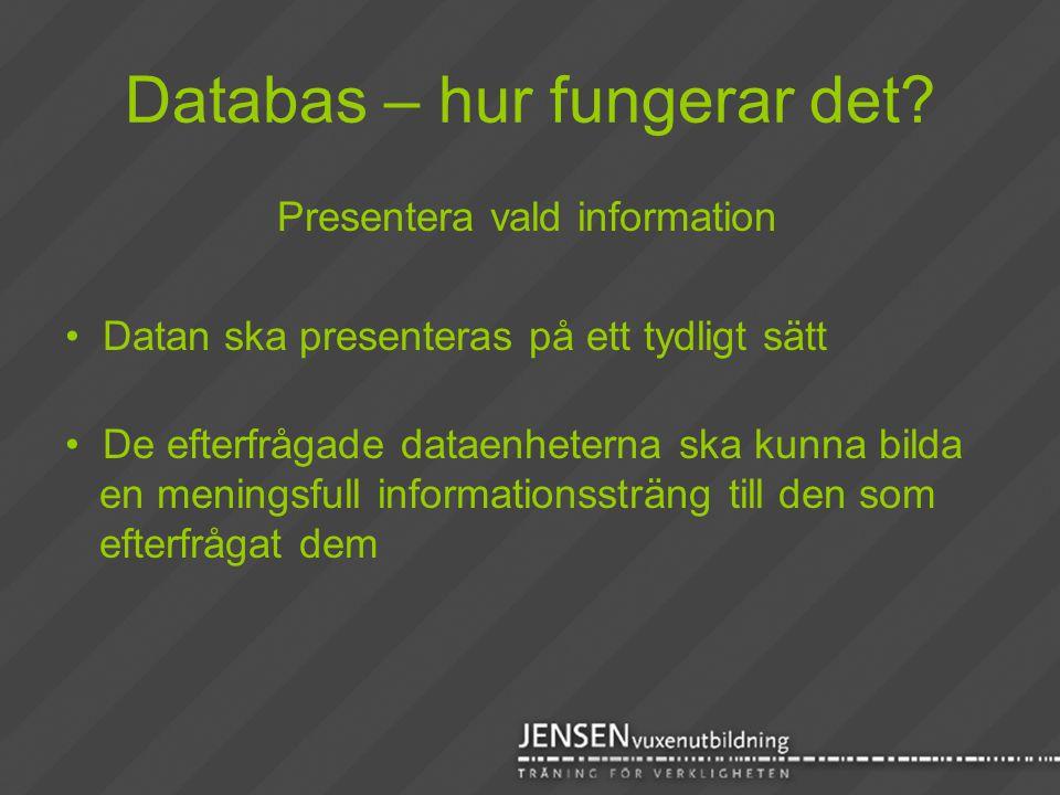 Databas – hur fungerar det