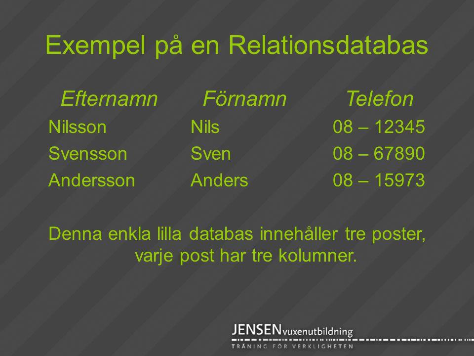 Exempel på en Relationsdatabas