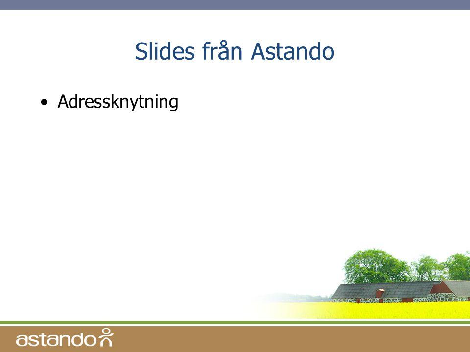 Slides från Astando Adressknytning